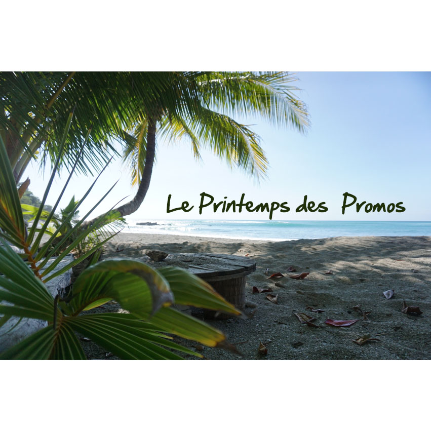 article-printemps-promos